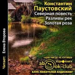 Скачать Паустовский Константин - Разливы рек. Золотая роза