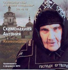 Трофимов Александр - Жизнеописание